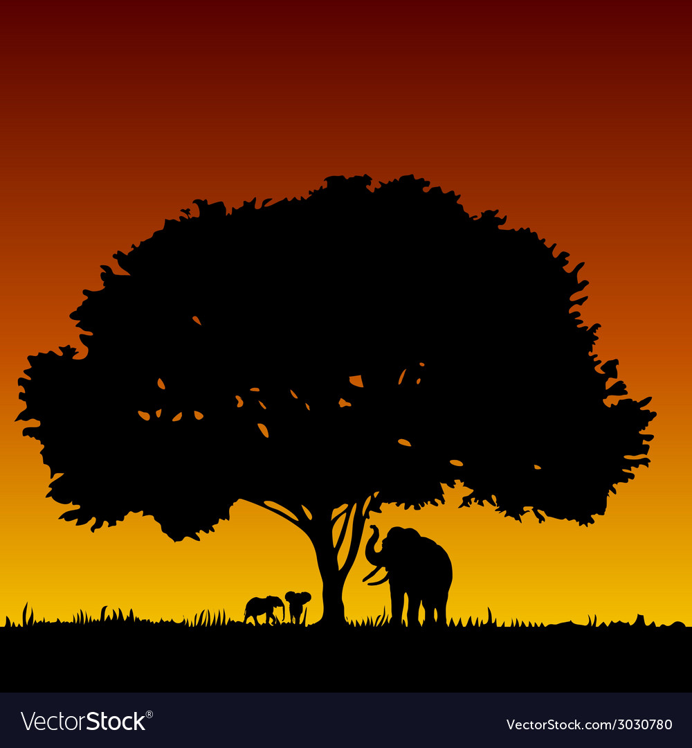 Elephant family and tree vector   Price: 1 Credit (USD $1)