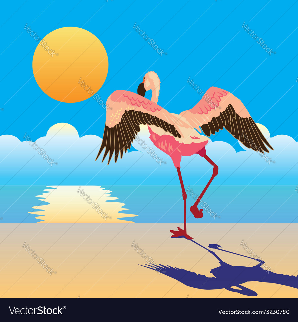 Flamingo on the shore vector | Price: 1 Credit (USD $1)