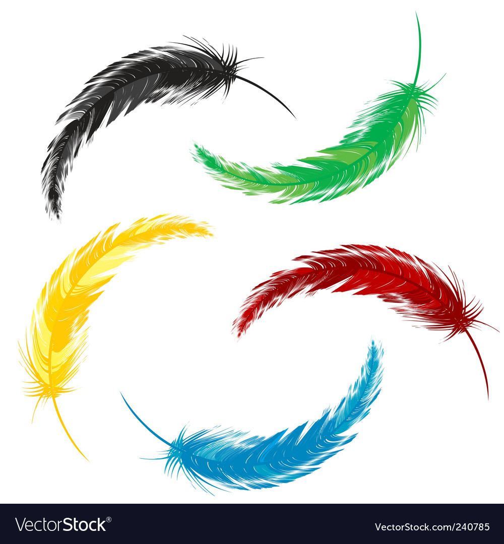 Set of colored feathers vector | Price: 1 Credit (USD $1)
