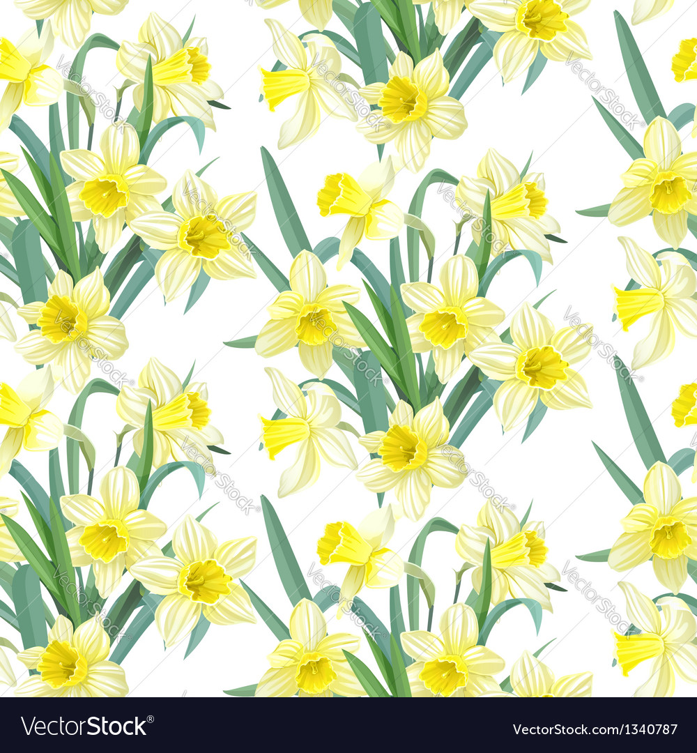 Seamless pattern lush yellow daffodils on white vector   Price: 1 Credit (USD $1)
