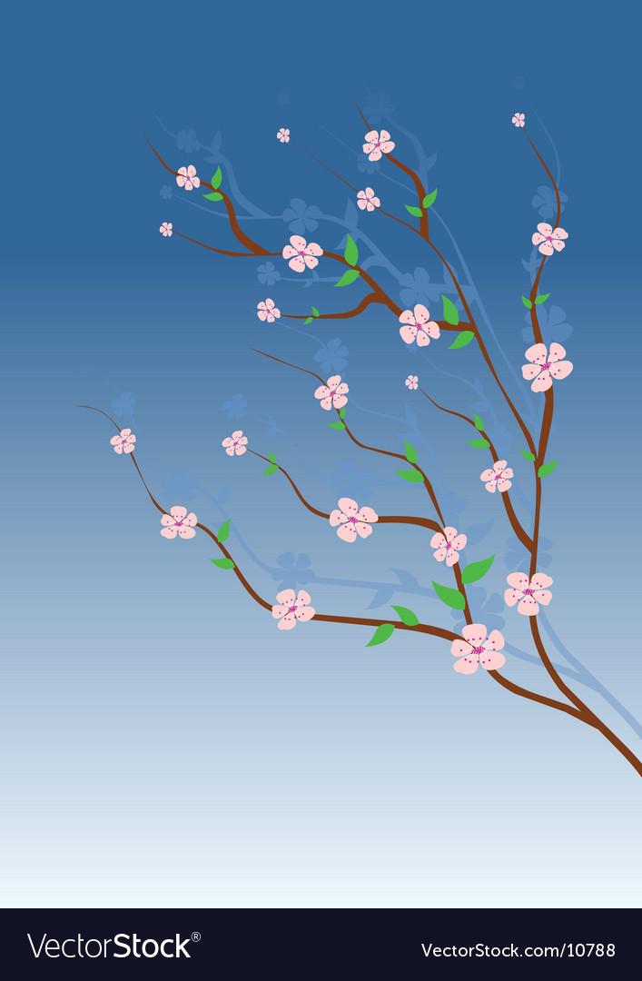 Almond tree vector | Price: 1 Credit (USD $1)
