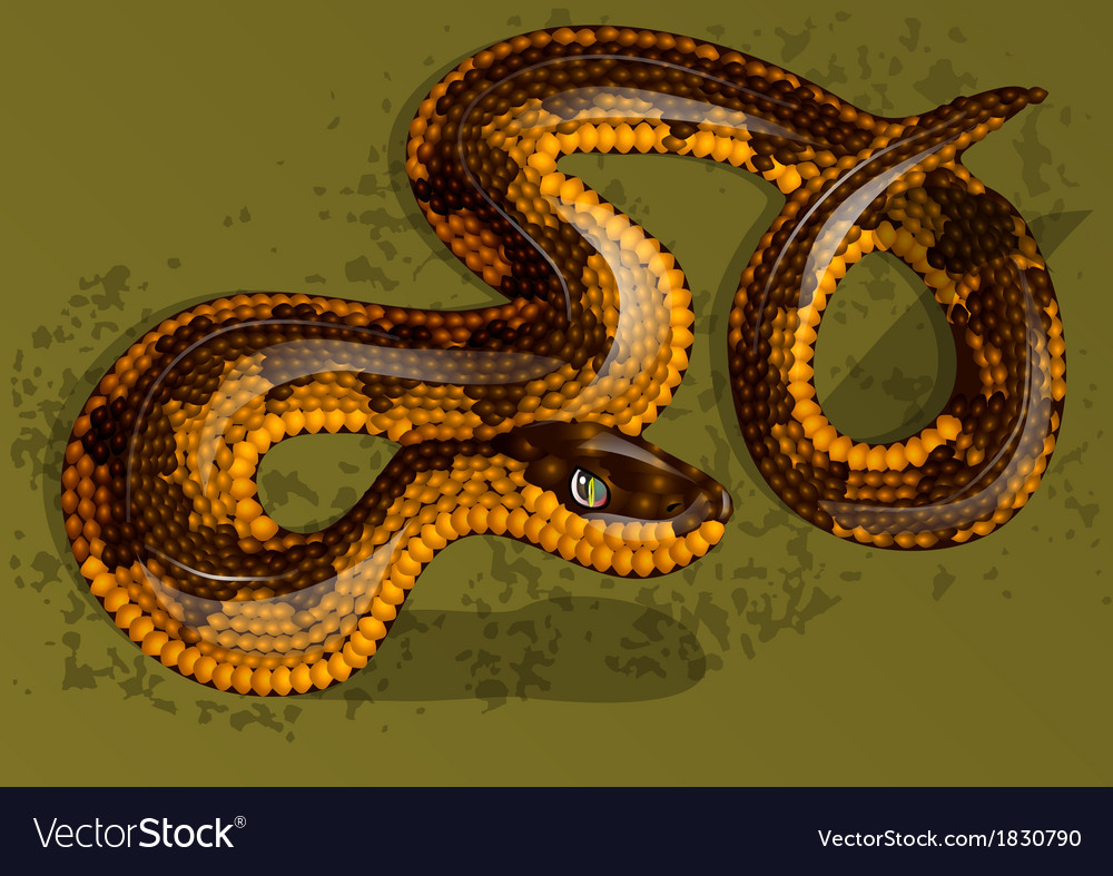 Snake vector   Price: 1 Credit (USD $1)