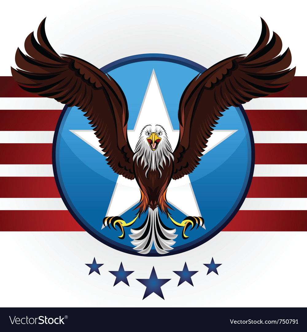 American bald eagle vector | Price: 3 Credit (USD $3)