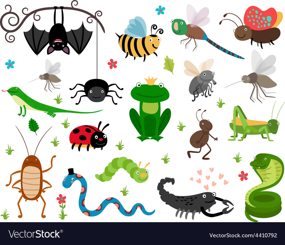 Cute insects reptiles bee grasshopper vector
