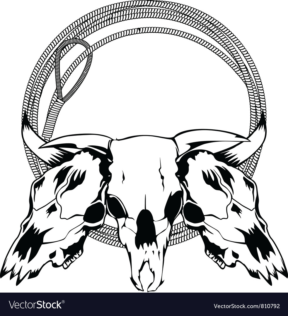 Skull bull and lasso vector | Price: 1 Credit (USD $1)