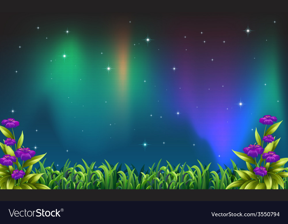Night view vector | Price: 3 Credit (USD $3)