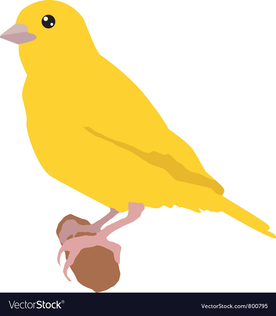 Canary vector | Price: 1 Credit (USD $1)