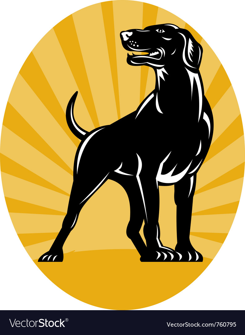 Retriever dog woodcut style vector | Price: 1 Credit (USD $1)