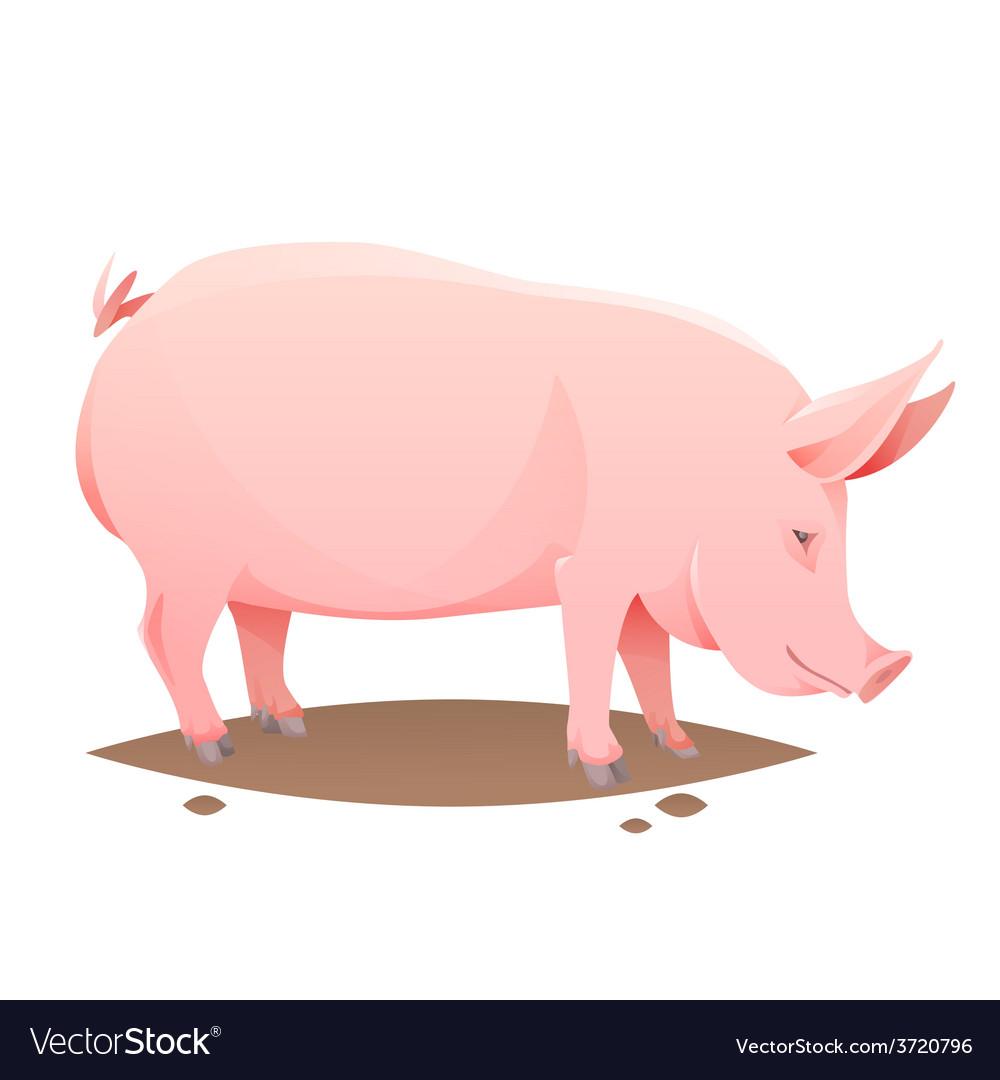Pink farm pig vector | Price: 1 Credit (USD $1)