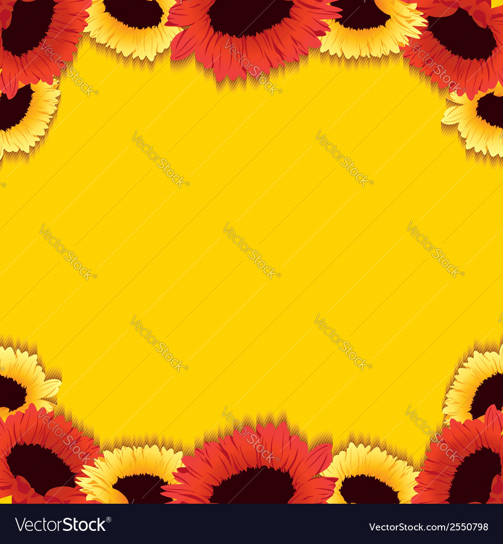 Gerberas background vector | Price: 1 Credit (USD $1)