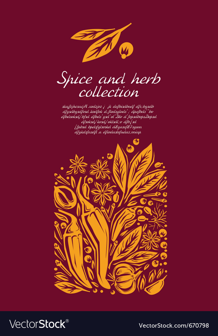 Herbs and spice vector | Price: 1 Credit (USD $1)