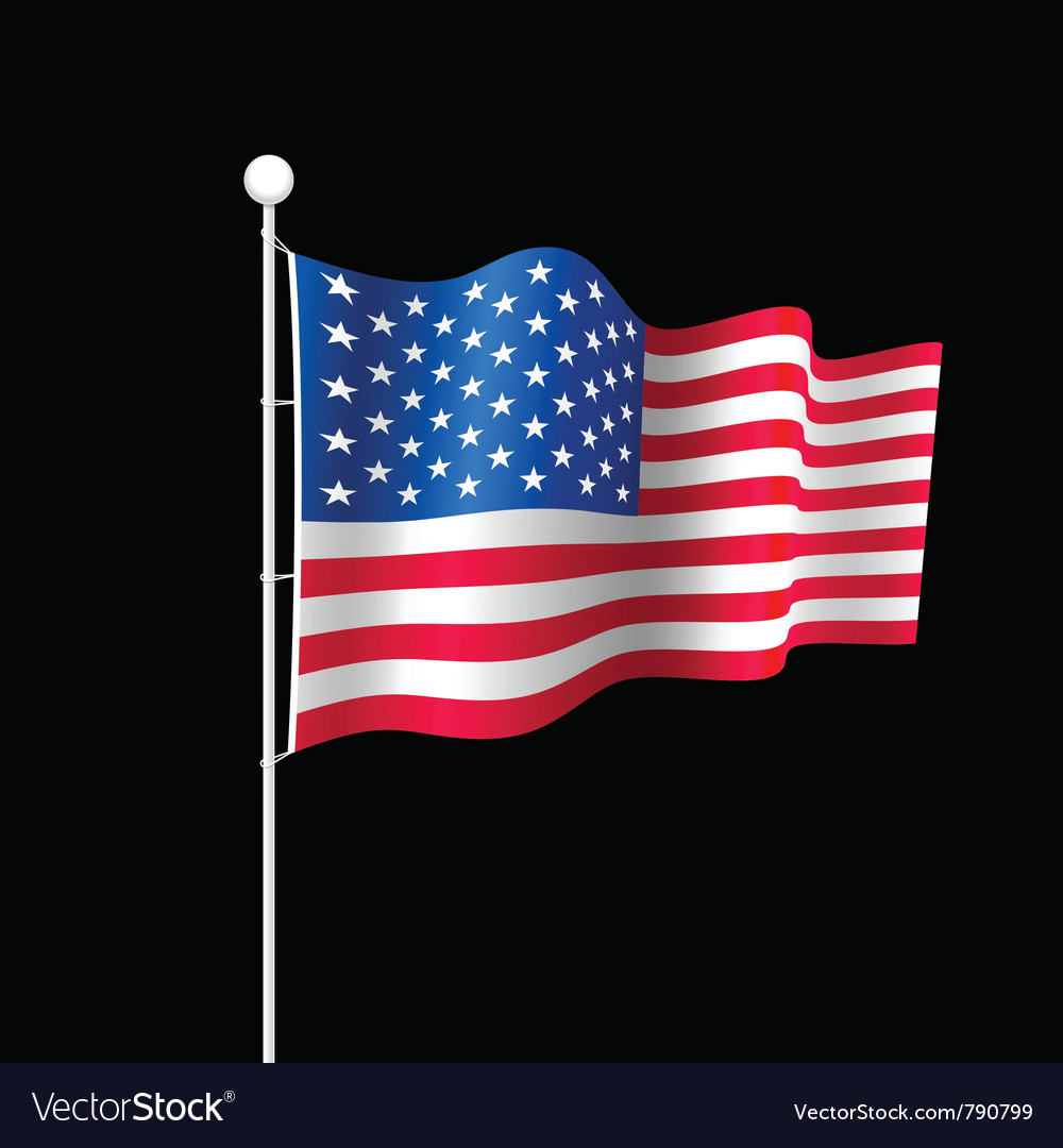 American flag vector | Price: 3 Credit (USD $3)
