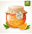 Orange jam jar vector