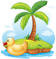 A yellow toy duck in an island vector