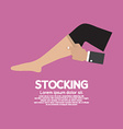 Lady stocking clothes accessories vector