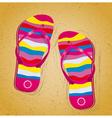 Beach slippers on sand vector