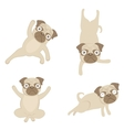 Yoga pugs vector
