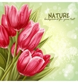 Preview background bouquet of pink tulips for your vector