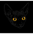 Cat breed sphinx vector