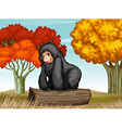 A gorilla at the forest vector