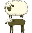 Two sheep vector