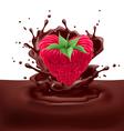 Raspberry heart with chocolate vector