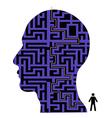 Human head maze vector