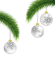 White christmas balls on pine branches isolated on vector