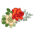 Red rose and daisies vector