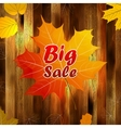Autumn sale wood and leaves poster plus eps10 vector