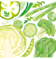 Mix of green vegetables vector