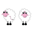 Sheep cartoon with sunglass vector