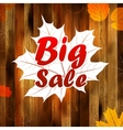 Autumn sale autumn leaves background plus eps10 vector