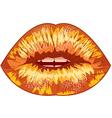 Sexual lips vector
