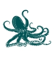 Octopus with tentacles vector