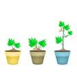 Three green eggplant tree in clay pots vector