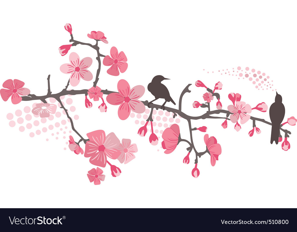 Cherry tree with flower vector