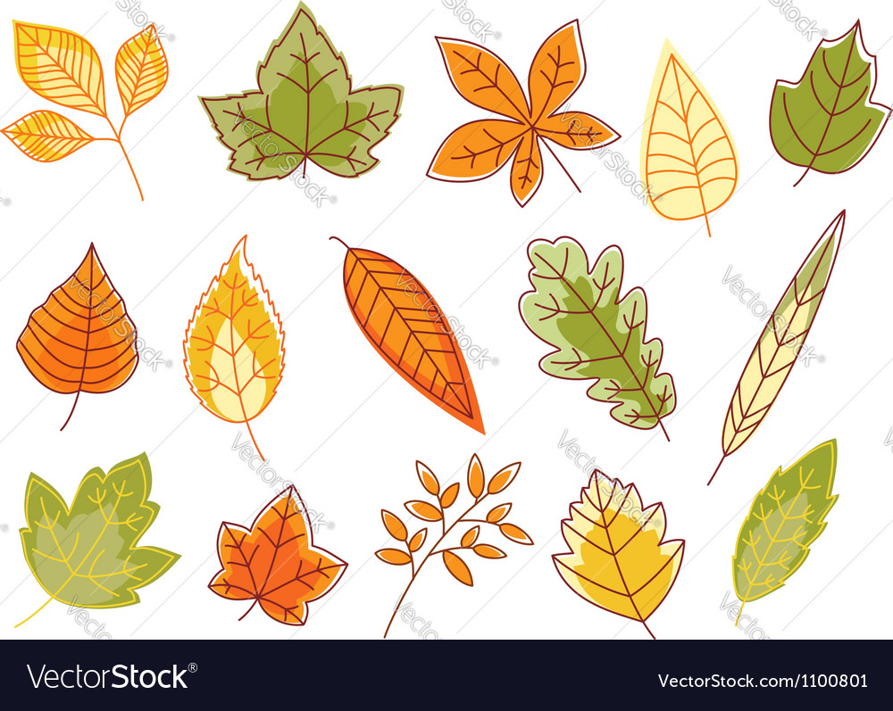 Autumnal colorful isolated leaves vector | Price: 1 Credit (USD $1)