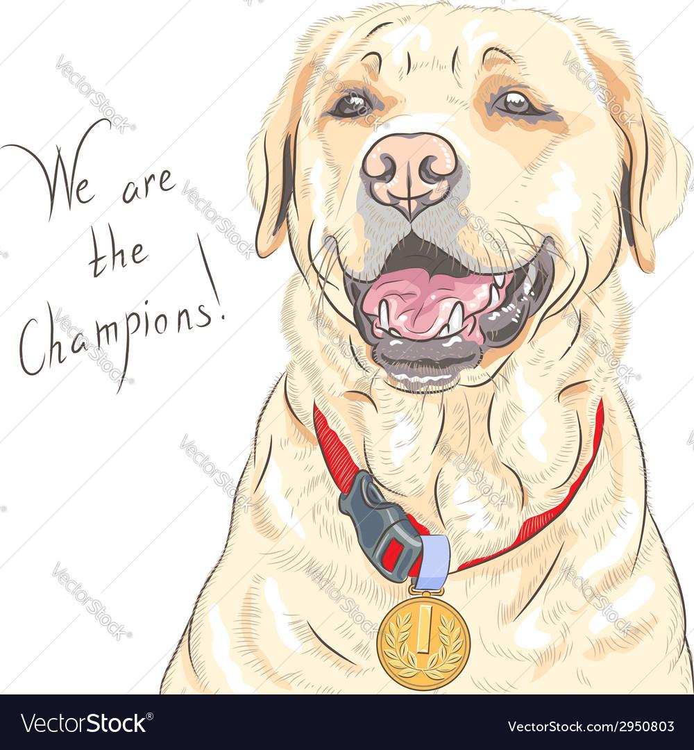 Smiling happy yellow dog breed labrador retriever vector | Price: 1 Credit (USD $1)