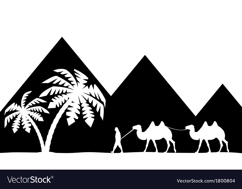 Man with camel of the pyramids vector | Price: 1 Credit (USD $1)