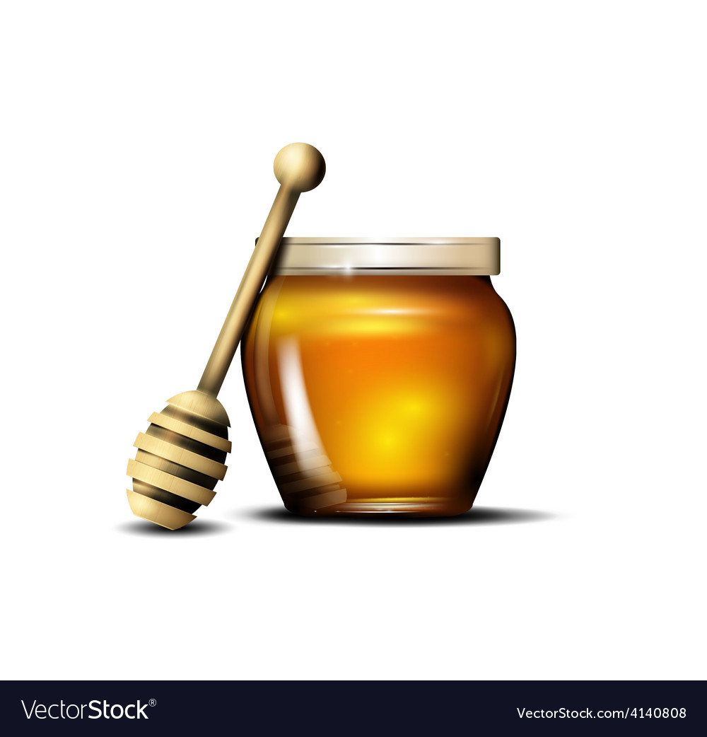 Honey isolated vector | Price: 1 Credit (USD $1)
