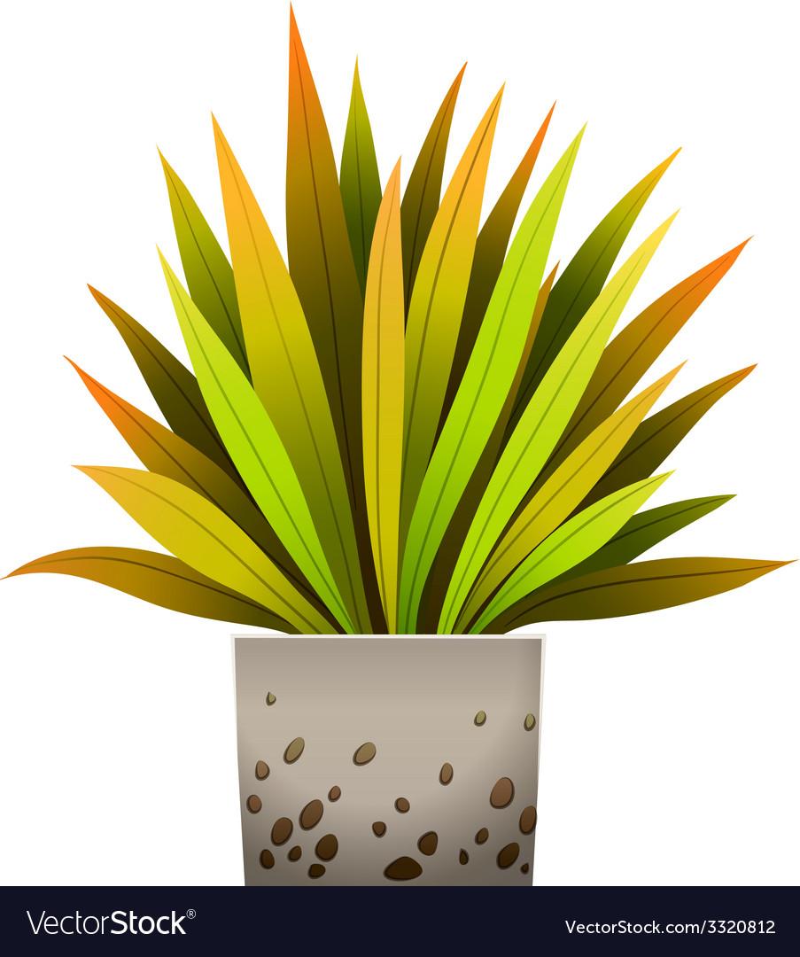 A decorative plant vector | Price: 1 Credit (USD $1)