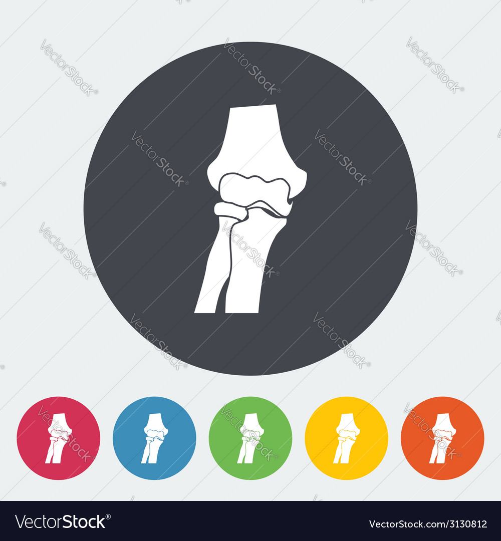 Knee-joint single icon vector | Price: 1 Credit (USD $1)