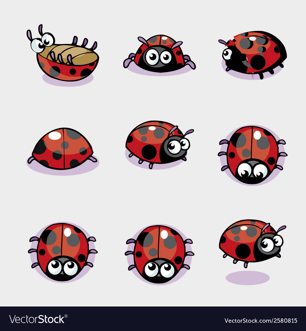 Set of lady bug vector | Price: 1 Credit (USD $1)