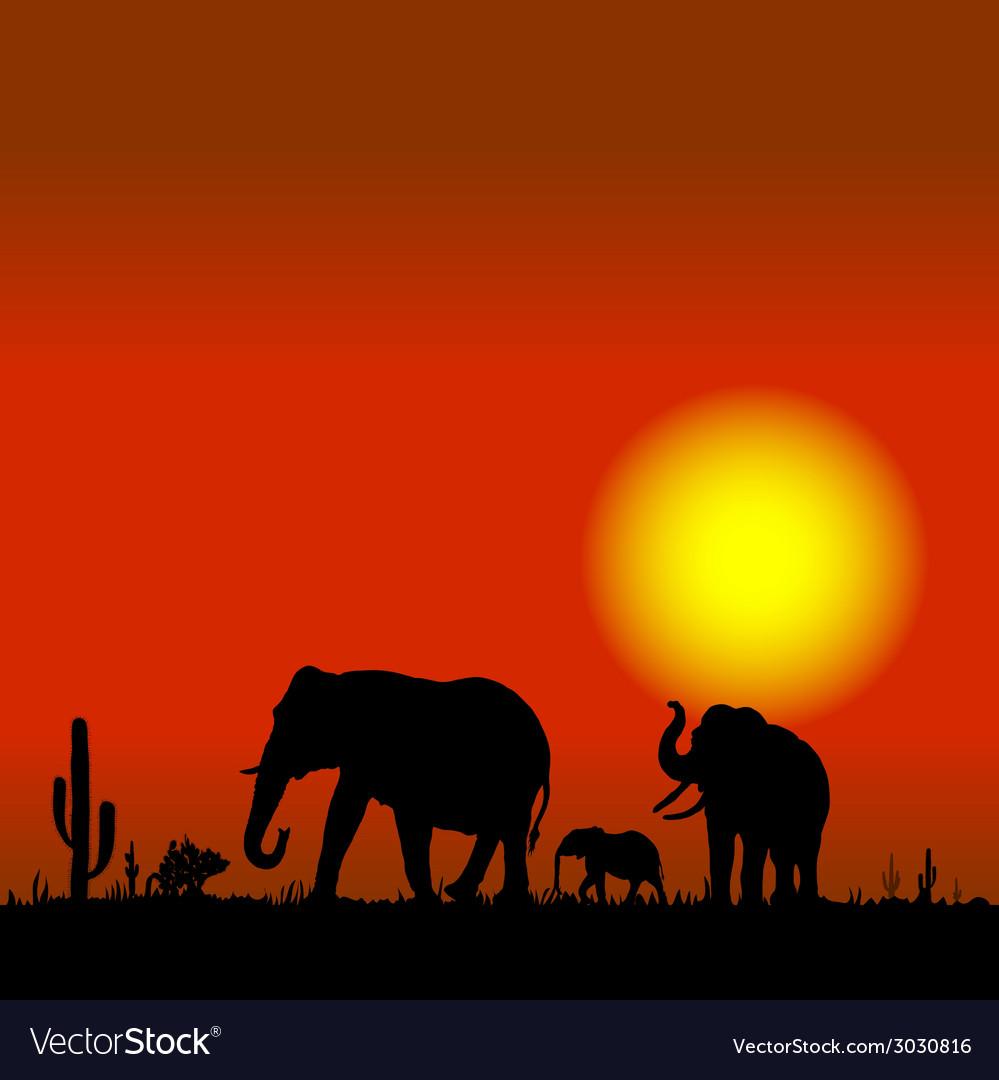 Elephant family in desert black silhouette vector   Price: 1 Credit (USD $1)