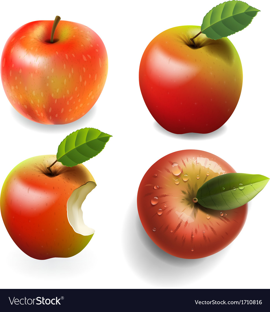 Set of red ripe apples four various view vector | Price: 1 Credit (USD $1)