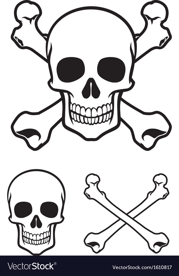Skull with cross bone vector | Price: 1 Credit (USD $1)