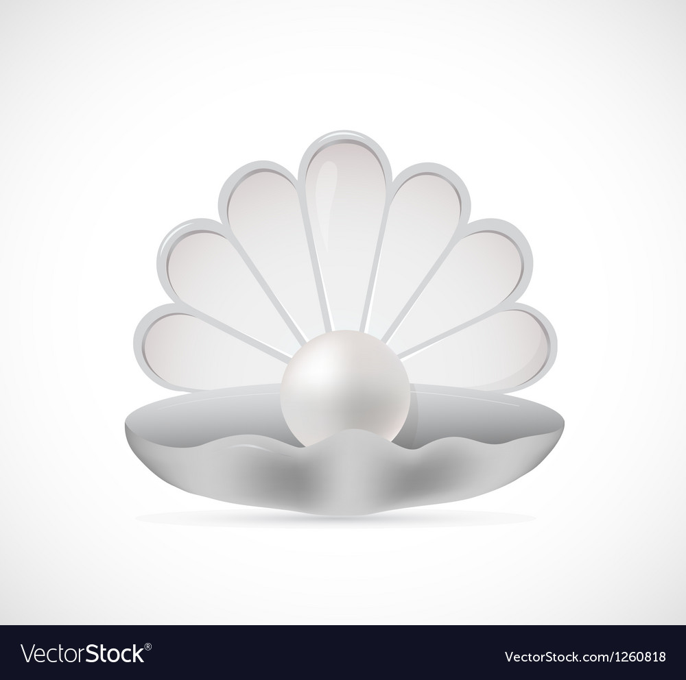 Shell pearl cartoon vector | Price: 1 Credit (USD $1)