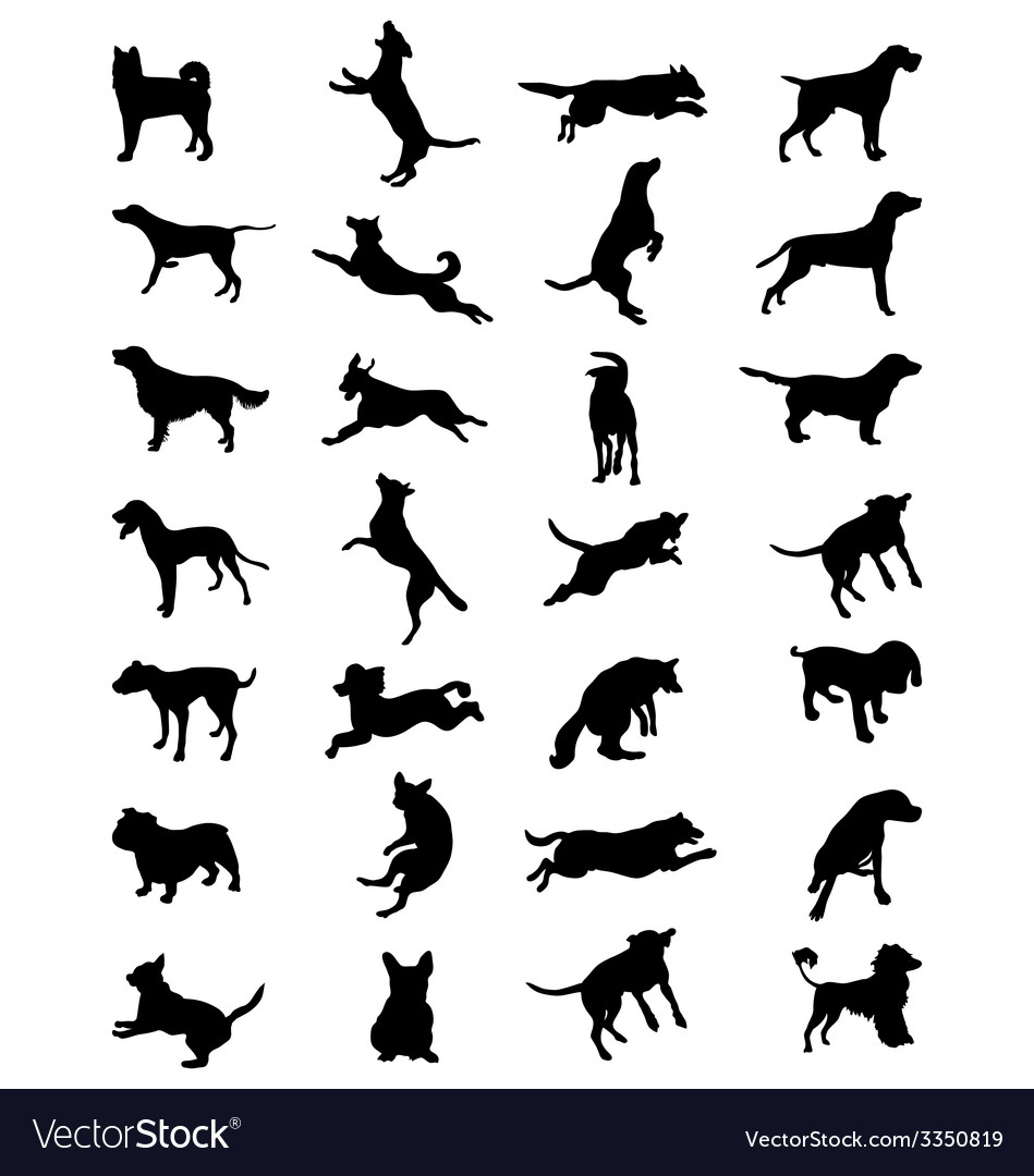 Dogs 2 vector | Price: 1 Credit (USD $1)