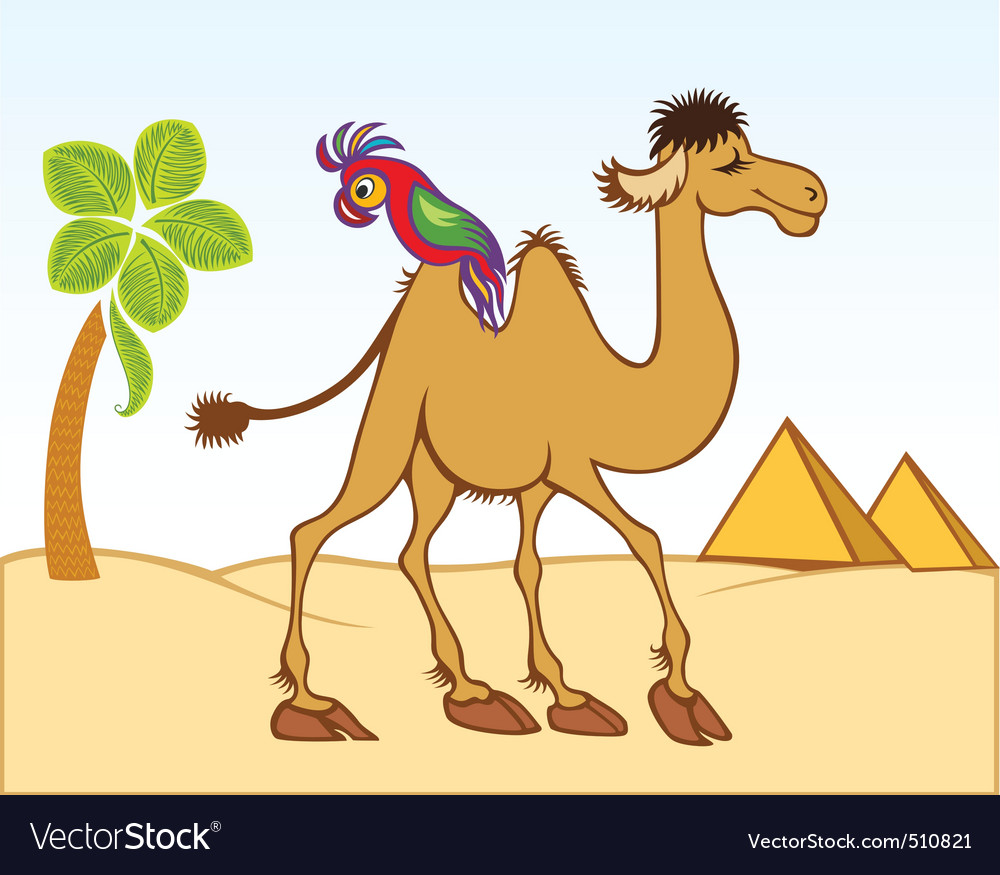 Camel parrot vector | Price: 1 Credit (USD $1)
